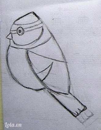 Thiết kế mẫu chim sẻ ngô lên bìa, nếu bạn không thạo vẽ thì in luôn hình mẫu này.