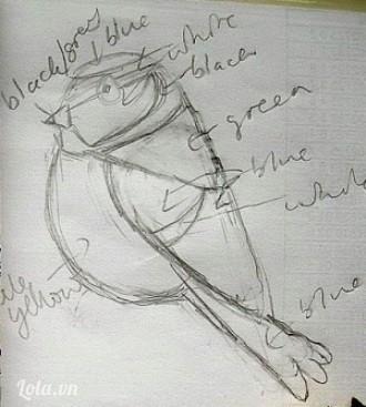 Vẽ thêm hình chim sẻ ngô tương tự để ghi chú cách phối màu, ghi rõ bộ phận nào mình sẽ dùng màu vải dạ nào. Bạn có thể làm nhiều chú sẻ ngô với cách phối màu khác nhau nên hình ghi chú này sẽ giúp bạn ghép vải dễ hơn, nhanh hơn.