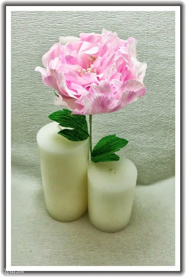 Hoa Mẫu Đơn giấy Crepe hồng