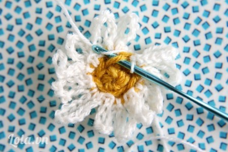 Bây giờ, chúng tôi sẽ làm hàng của cánh hoa bên trong Móc mũi st trong vòng lặp trước khâu đầu tiên trong trung tâm hoa, Móc 10 mũi Ch , Mũi st trong vòng phía trước của cùng một khâu, 10  ,lặp lại từ ** 5 lần trở lên. (Tổng cộng có 12 cánh hoa được thực hiện trong vòng lặp .) Tháo chỉ ra và kết thúc.