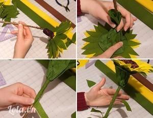 Luồn 1 đầu của cành cây vào phần dưới nhụy hoa. Cuốn dây kẽm từ phần dưới nhụy hoa xuống quanh 1 đầu thân cây để chúng gắn chặt vào nhau.Cắt giấy màu xanh lá thành hình chữ nhật kích thước 15cm x 30cm, vê 1 cạnh dài. Dán gắn miếng giấy này thành đài hoa to ở dưới sát cuống cánh hoa, bóp nhẹ tạo dáng tự nhiên. Dùng giấy xanh dán cuốn kín cành cây.Dángắn các mày lá (hình nửa chiếc lá) bọc dưới cuống mỗi lá tại chỗ ráp với thân cây. Gắn lá cây so le với nhau để tạo vẻ tự nhiên như cây hoa thật.