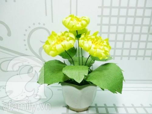 Chậu hoa cúc vàng