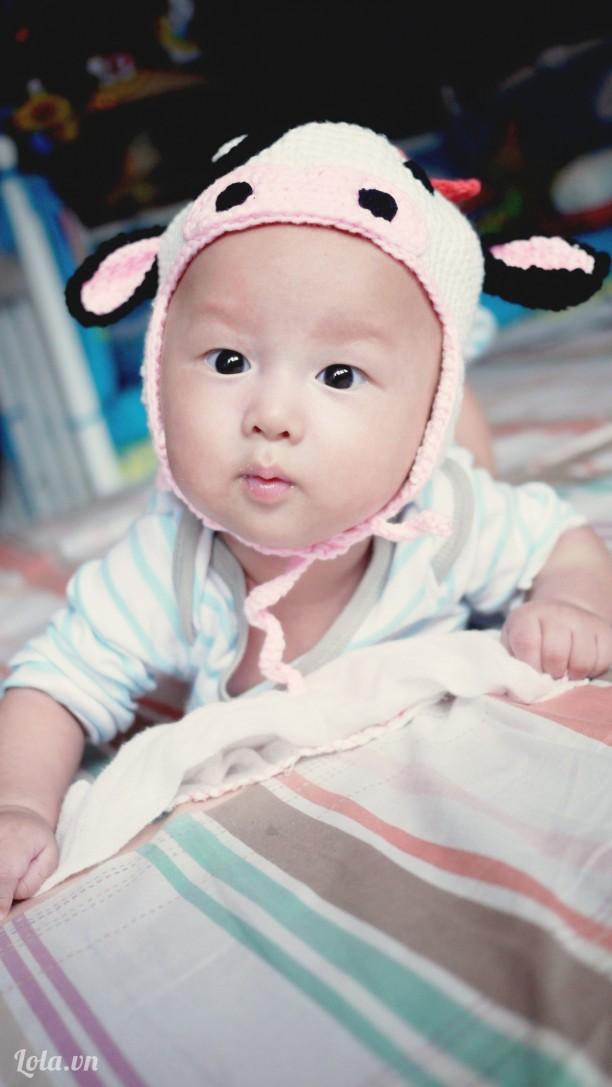 Mũ len bò hồng cho bé