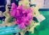 Bó hoa dạ hương - giấy nhún