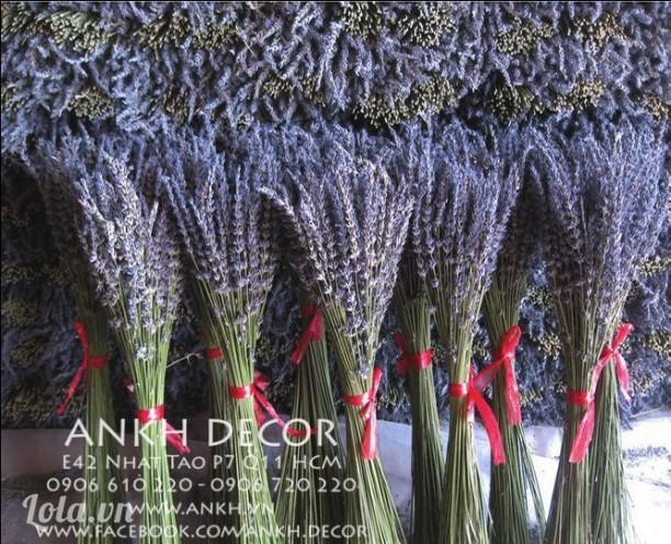 Hoa oải hương khô - True Lavender & Lavandin