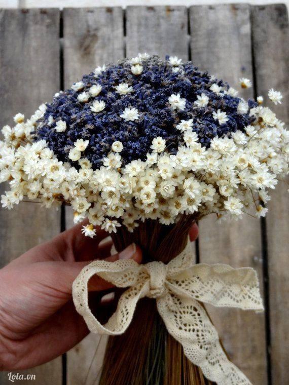 Hoa khô nhập khẩu, hoa oải hương khô