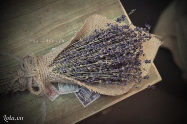 Bó hoa lavender phong cách cổ điển cho ngày 14-2