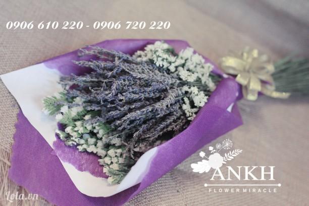 Phân phối sỉ hoa oải hương giá rẻ