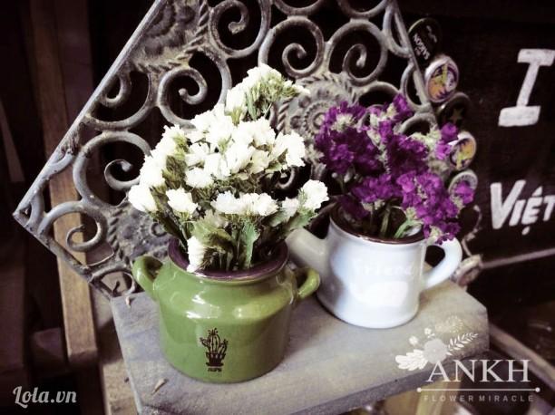 Hoa salem khô