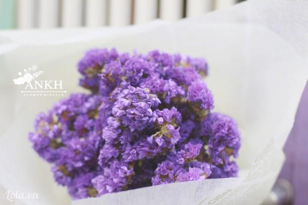 bán sỉ - lẻ hoa khô giá rẻ