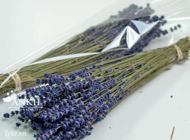 Hoa Oải hương khô thơm nồng từ Pháp