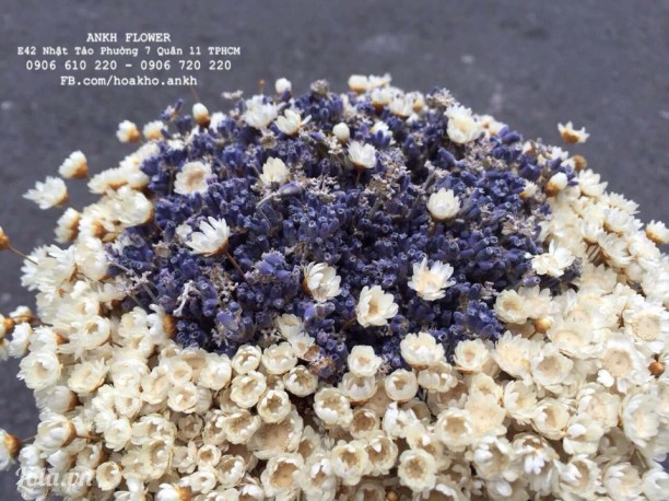 Bó hoa cưới lavender + Snowy
