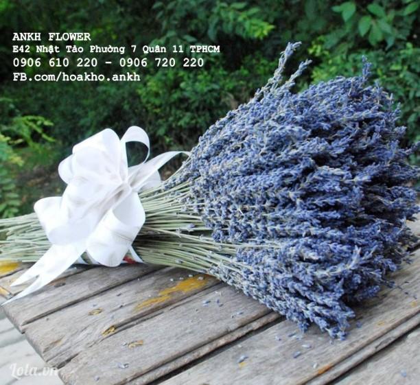 hoa cưới lavender