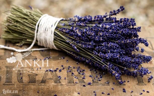 Bó hoa lavender cổ điển cho ngày 20/10