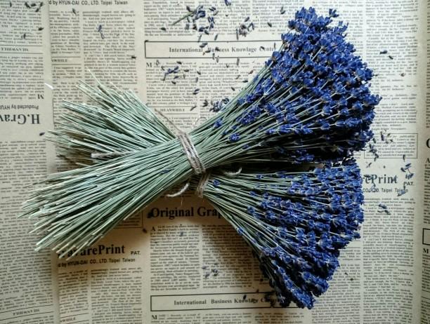Hoa Khô Lavender và các vật dụng handmade
