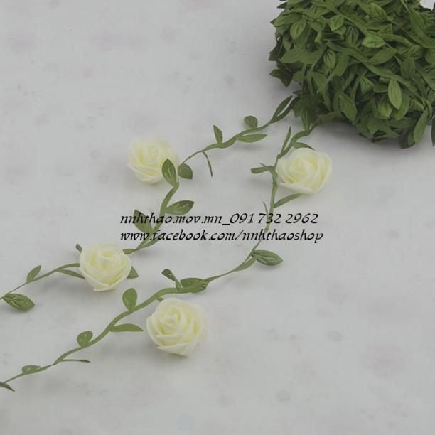 Dây lá (làm vòng hoa)