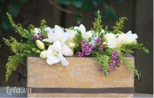 Làm chậu hoa xinh từ hộp giấy ăn