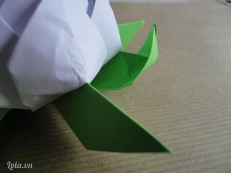 Sau khi mở hoar a bạn làm tiếp tục làm điều đó với lá
