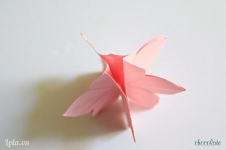 Cứ thế chúng ta dán 5 bông hoa dính lại với nhau tạo thành 1 khối. Các bạn click vào hình để xem rõ hơn nhé.