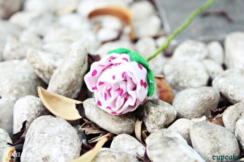 May hoa hồng vải