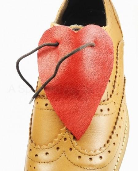 Xỏ  hai dây giày lại với nhau như hình