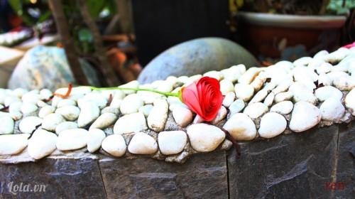 Làm hoa hồng bằng giấy