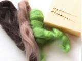 Needle felting - Kiwi