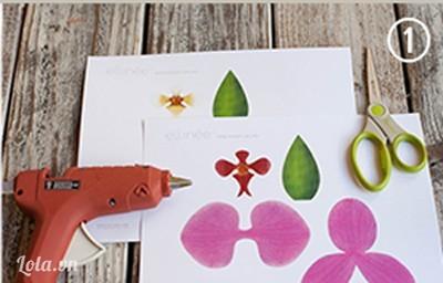 In hình hoa lan màu trắng và màu hồng theo mẫu lên giấy bìa