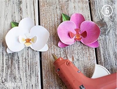 Dán lá nằm dưới cánh hoa