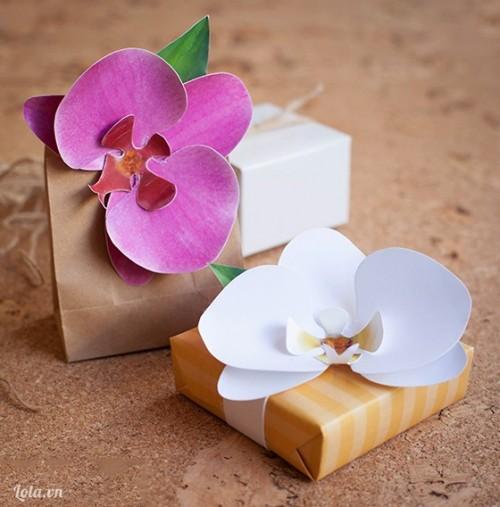 Hộp quà hoa Lan cho ngày 8-3