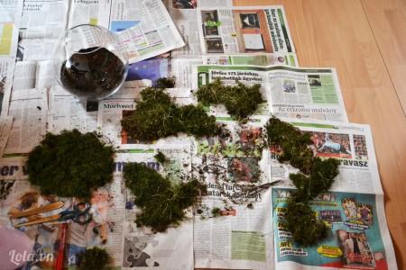 Bạn bỏ đất vào bình và lọc rong rêu ra để xếp vào bình