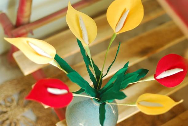 Hoa Vải - Hồng Môn / Tulip mùi hương quế